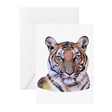Tiger Face Greeting Cards (Pk of 10)