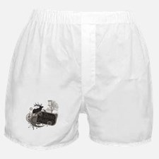 Oakland Disc Golf Boxer Shorts