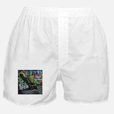 Urban T-Rex Boxer Shorts