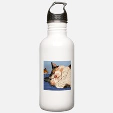 Catnapping Water Bottle