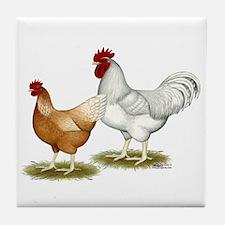 Golden Sex-link Chickens Tile Coaster