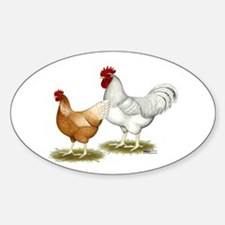 Golden Sex-link Chickens Decal