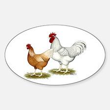 Golden Sex-link Chickens Sticker (Oval)