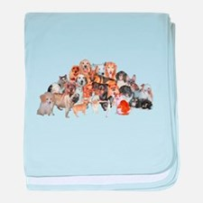Other Dogs and Cats baby blanket