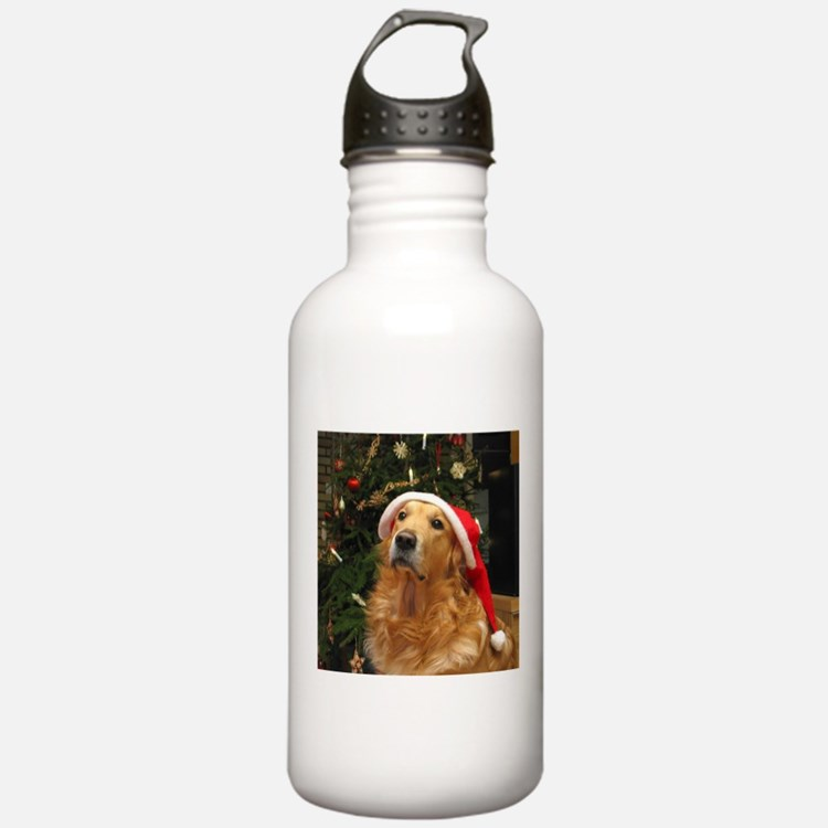 Golden Santa Water Bottle