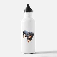 'Lily Dachshund Dog' Water Bottle