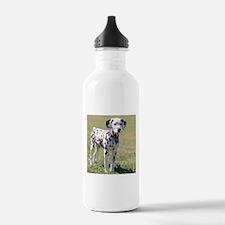 Dalmatian Puppy Water Bottle