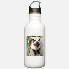 Siamese Cat Bench Water Bottle