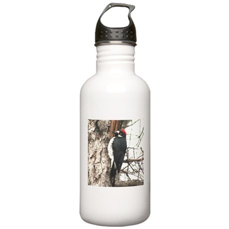 California Redheaded Woodpeak Stainless Water Bott
