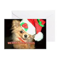 Chihuahua Xmas Greeting Cards (Pk of 10)