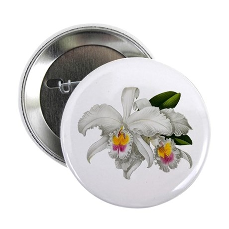 "CATTLEYA ORCHID 2.25"" Button (100 pack)"