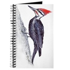 handsome pileated woodpecker Journal