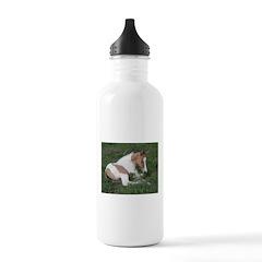 Sleeping foal Water Bottle