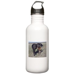 Paints and Pintos Water Bottle