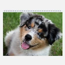 Australian Shepherd Calendar 2