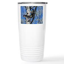 Pileated Woodpecker Family Travel Mug