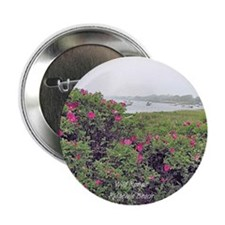 """WILD ROSE 2.25"""" Button (10 pack)"""