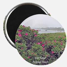 WILD ROSE Magnet