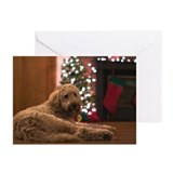 Labradoodle Greeting Cards (20 Pack)