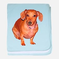 Helaine's Doxie baby blanket