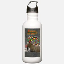 Helaine's Rudolph the What? Water Bottle