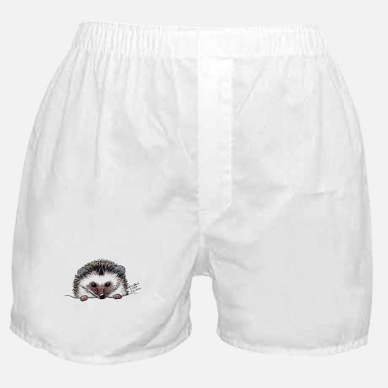 Pocket Hedgehog Boxer Shorts