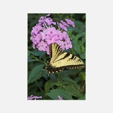 BUTTERFLY ON PHLOX Rectangle Magnet