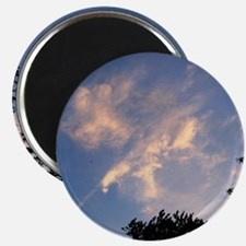 EAGLE IN THE CLOUDS Magnet