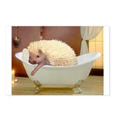 Hedgie Spa Postcards (Package of 8)