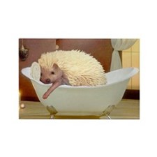 Hedgie Spa Rectangle Magnet