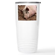 Sleeping Pig Travel Mug