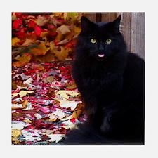 Kitty with an Attitude Tile Coaster