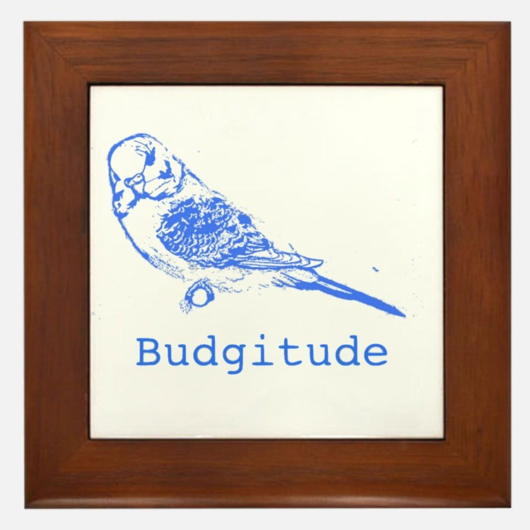 Cute Budgerigars Framed Tile