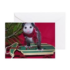 Opossum on Sled Christmas Cards (Pk of 20)