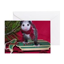 Christmas Card Opossum on Sled