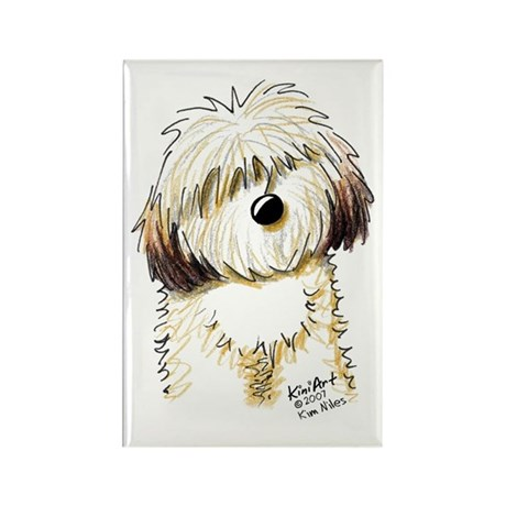Havanese Caricature Rectangle Magnet (100 pack)