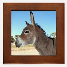 Miniature Donkey Framed Tile