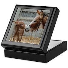 Newborn Donkey Keepsake Box