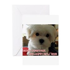 toady's Greeting Cards (Pk of 20)