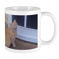 Tabby Cat I Want Food Mug