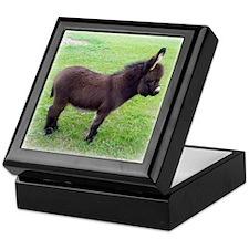 Donkey Foal Keepsake Box