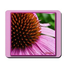 Pink Cone Flower Mousepad