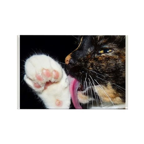 Kitty Lickin' Good! Rectangle Magnet