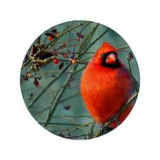 """Winter Cardinal 3.5"""" Button"""