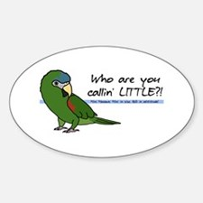 Little Noble Macaw Oval Decal