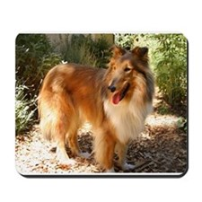 Fun Collie Mousepad