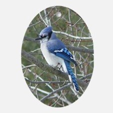 Blue Jay Ornament (Oval)
