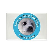 Anti-Fur Harp Seal Pup Rectangle Magnet