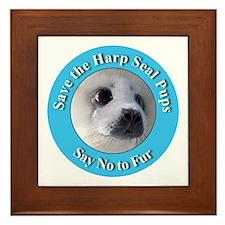 Anti-Fur Harp Seal Pup Framed Tile
