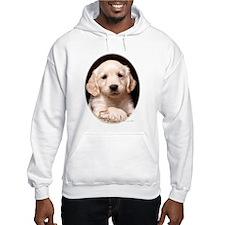 Golden Retriever Puppy Oval Frame Hoodie